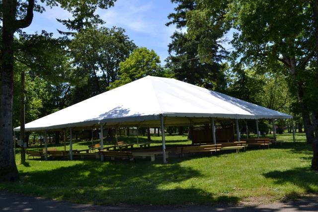 Where to find WHITE 50X60 CANOPY in Portland